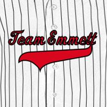 team-emmett-tail-pinstripe-baseball-jersey-cropped